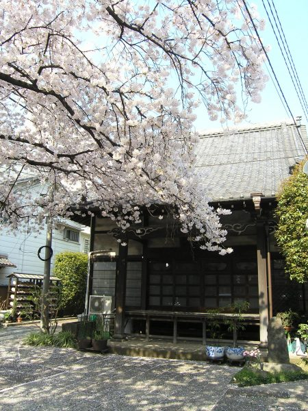 浄土宗 宝島山峯樹院「大信寺」
